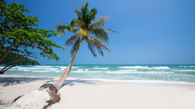 2014 sees Phu Quoc's positive change