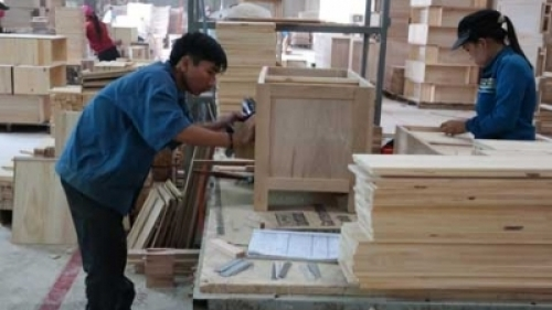 Opportunities, challenges face wood processing industry as Vietnam joins TPP