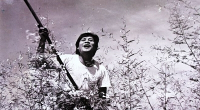 Vietnam films screened on India TV for the first time