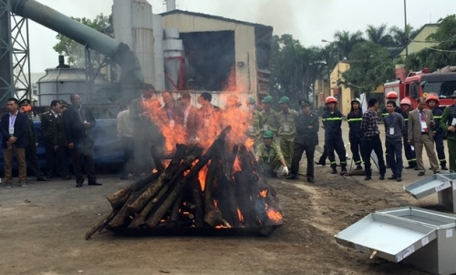 Vietnam incinerates tonnes of illegal elephant ivory and rhino horn