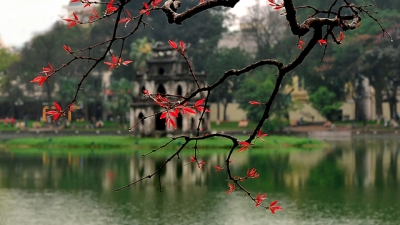 Hanoi: Plans mapped out for water quality improvement in Hoan Kiem Lake