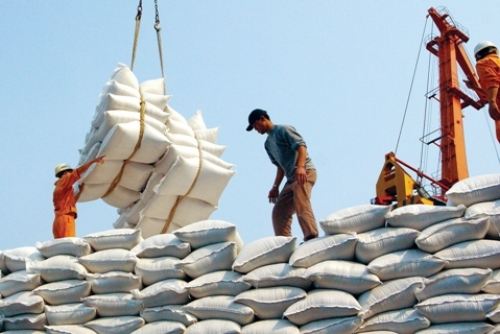 Creating favourable conditions for rice exports