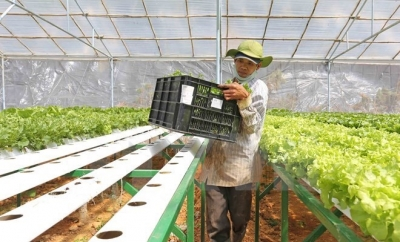 Agricultural sector pins hopes on Japanese investment