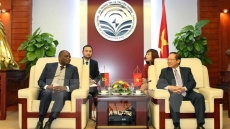 Vietnam, Angola co-operate in IT and telecommunications