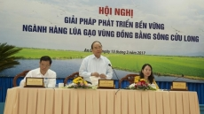 PM chairs conference for rice industry in Mekong River Delta