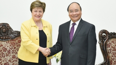 Prime Minister values WB's role in Vietnam's development