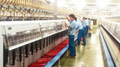 Creating conditions to promote textile and garment exports