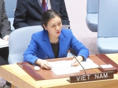 Vietnam calls for peaceful solutions to Israel-Palestine conflict, Syria war