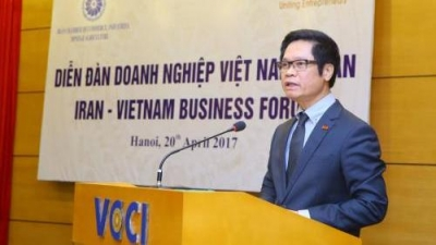 Enormous potential for Vietnam - Iran economic co-operation