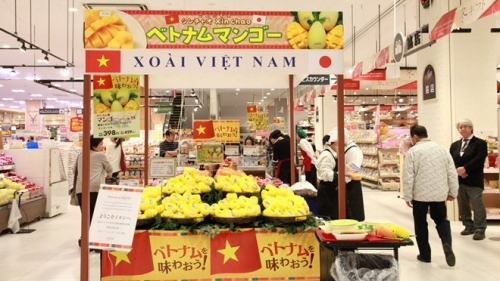 Vietnam's fruit and vegetable exports hit new record