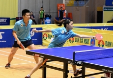 Hai Duong pair wins mixed doubles title