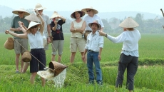 Foreign visitors to Vietnam reach 5.2 million