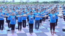 Mass yoga demonstration attracts crowds