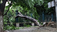 Storm Talas weakens after sweeping through Central Vietnam