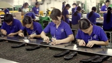Brand development crucial for Vietnamese goods to enter EU market