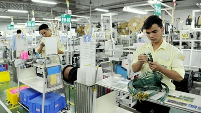 More expectation placed on increased FDI effectiveness