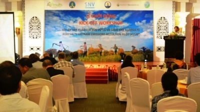 AgResults Vietnam Emissions Reduction Pilot launched in Thai Binh province