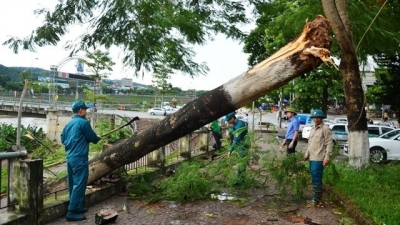 PM orders prompt response to rains and floods caused by typhoon Hato
