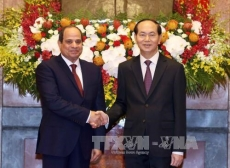 Vietnamese, Egyptian Presidents hold talks