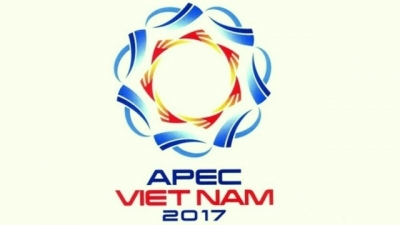 President calls for effective preparation in organising APEC 2017