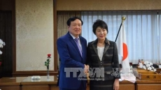 Japan's justice ministry keeps all-round cooperation with Vietnam
