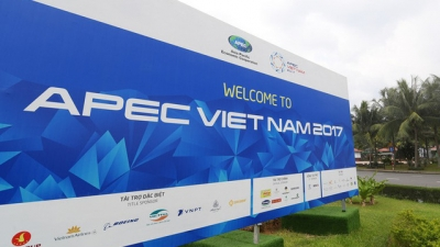 APEC asserts Vietnam's new vision and position