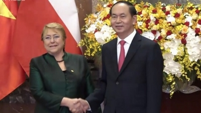 Deepening comprehensive partnership between Vietnam and Chile