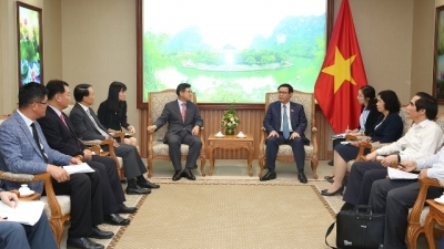 Deputy PM Hue meets with Samsung Vietnam leader
