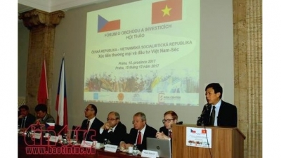 Czech regards Vietnam as an important economic partner: Czech official