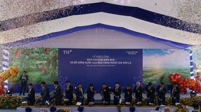 Work begins on hi-tech fruit processing plant in Son La province