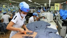 Dong Nai draws over US$147 million in FDI in first two months
