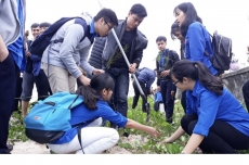 Localities nationwide launch New Year tree planting festival