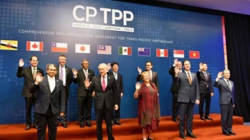 Vietnamese enterprises expect benefits from CPTPP trade deal
