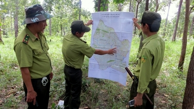 Localities step up measures against forest fires