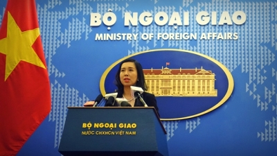 Vietnam welcomes efforts for peace and stability on Korean peninsula
