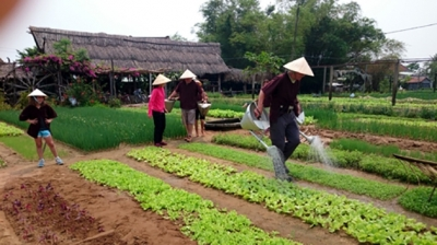 Developing tourism based on agricultural advantages