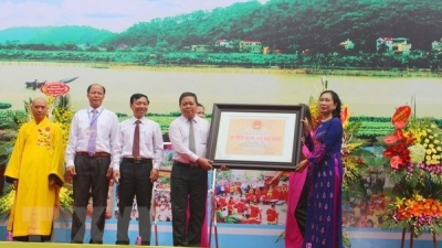 Doi Son pagoda in Ha Nam gets special national relic status