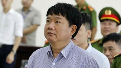Appeal court upholds jail sentence for Dinh La Thang