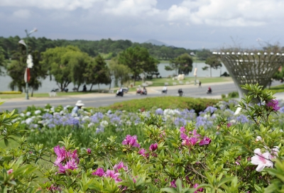 Da Lat – a city of flowers