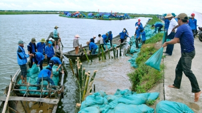 Vietnamese, Japanese localities work to handle environmental issues
