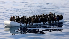 Seeking a solution for the migration problem