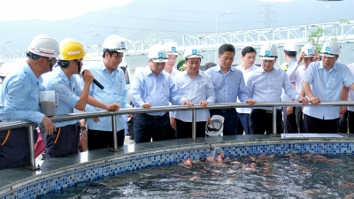 PM inspects environment at Formosa Ha Tinh steel company