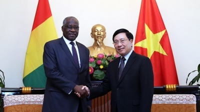 Vietnam, Guinea seek to expand cooperation