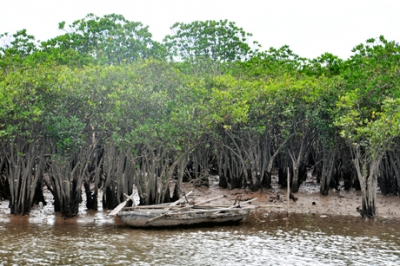 Workshop discusses sustainable development of coastal ecosystems