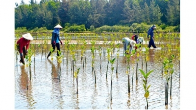 Vietnam strives hard in responding to climate change: official