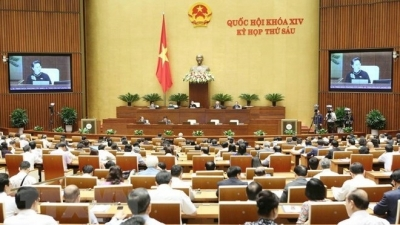 October 29 – November 4: 14th National Assembly completes Q&A session