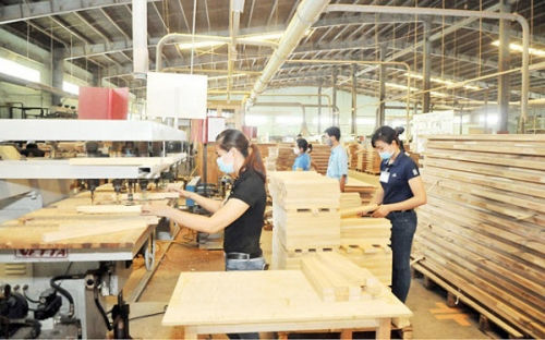Measures to promote sustainable exports of wood and forestry products