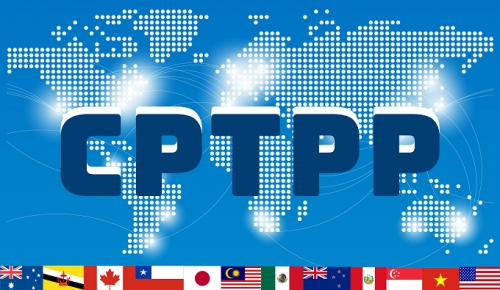 CPTPP opens up opportunities for cooperation and development
