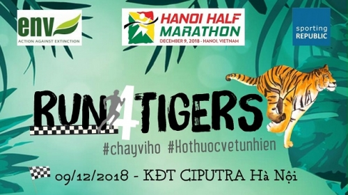Over 800 runners to join Hanoi half marathon race calling for tiger protection in Vietnam