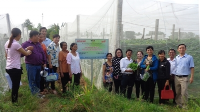 Tra Vinh works to improve climate change response